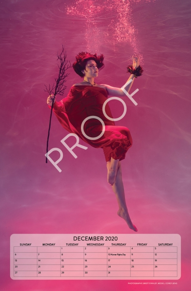 Calendar-2020-proof13